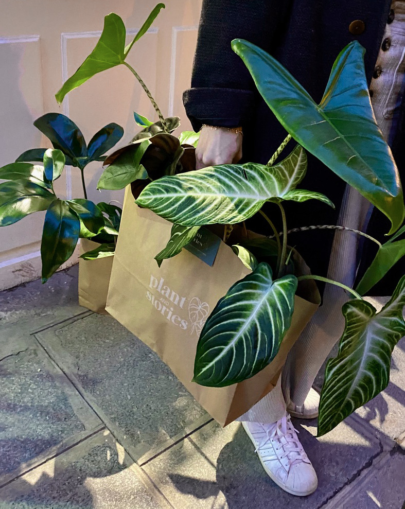 Pop-up store végétal Plant and Stories